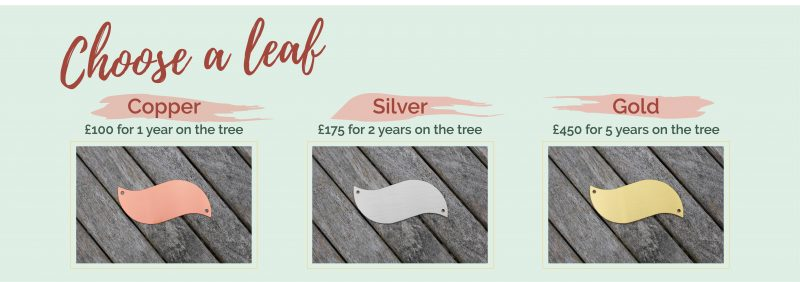 Memory Tree choose your leaf - Copper £100 for 1 year on the tree, Silver £175 for 2 years on the tree, Gold £450 for 5 years on the tree